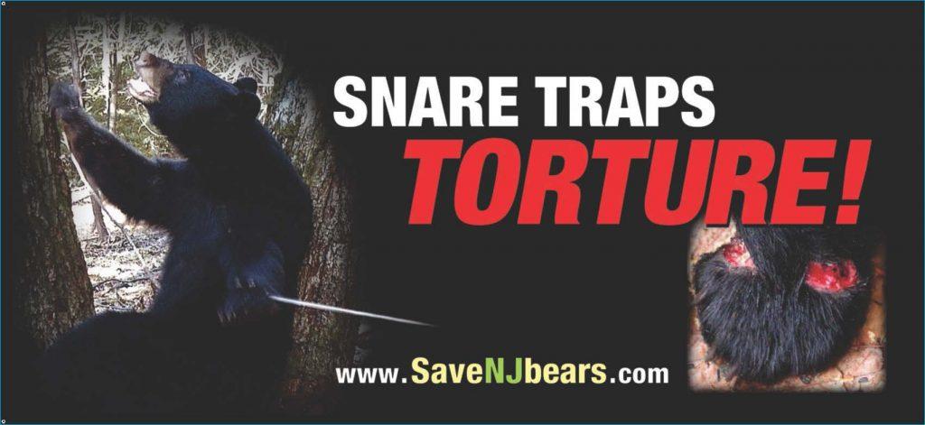 Snare Trap Billboard